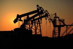鲁胜公司油区监控系统